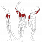 BH FITNESS L070 svalové partie