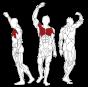 BH FITNESS L270 BUTTERFLY svalové partie